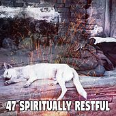 47 Spiritually Restful by Relaxing Music Therapy
