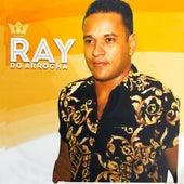 2019 de Ray do Arrocha