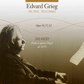 Grieg: Lyric Pieces, Opp. 54, 57 & 62 von Ziad Kreidy