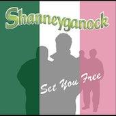 Set You Free von Shanneyganock