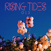 Rising Tides 013 by Various Artists