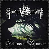 Solitude in B Minor by Gloomy Erudite