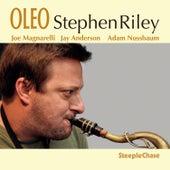 Oleo de Stephen Riley