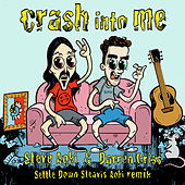 Crash Into Me (Settle Down Steavis Aoki Remix) di Steve Aoki