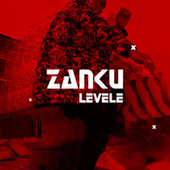 Zanku Level de Various Artists