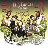 Nu Flow van Big Brovaz