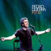 Fénix de Pedro Guerra