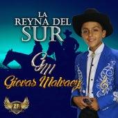 La Reyna del Sur by Giovas Malvaez
