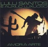 Amor A Arte de Lulu Santos