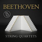 Beethoven: String quartets de Various Artists