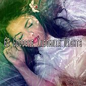 65 Goodbye Insomnia Nights by S.P.A