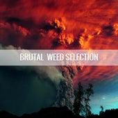 Brutal Weed Selection 2k17 de Various Artists