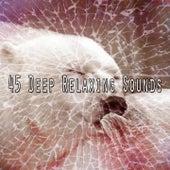 45 Deep Relaxing Sounds by Relajación