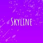Skyline (Instrumental Version) de The Raindrops