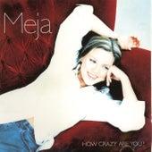How Crazy Are You? von Meja