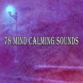 78 Mind Calming Sounds von Massage Therapy Music