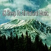 63 Sleep to All Natural Music de Relaxing Music Therapy