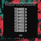 Re:Process - Tech House, Vol. 29 by Wurfel Deeper Than L
