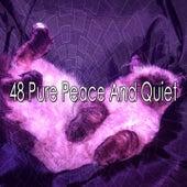 48 Pure Peace and Quiet de Calming Sounds
