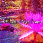 49 Pleasant Night Peace de Meditación Música Ambiente