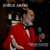 Ojalá Que No Puedas de Jorge Arias