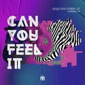 Can You Feel It (Radio Edit) de Inndrive