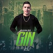 Culpa do Gin by Jhonny Welker