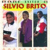 Grandes Exitos von Silvio Brito