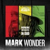 Working Wonders in Dub by Mark Wonder
