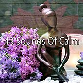 43 Sounds of Calm von Yoga