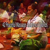42 Peaceful Massage Ambience Sounds de Study Concentration