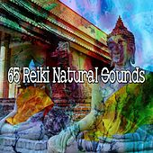 65 Reiki Natural Sounds de Musica Relajante