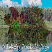 40 Relaxing Tracks for Yoga de Massage Tribe