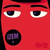 iZem Remixes by Les Frères Smith