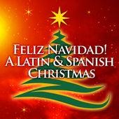 Feliz Navidad! A Latin & Spanish Christmas de Various Artists