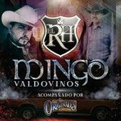 Mingo Valdovinos de R.H.