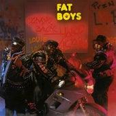 Coming Back Hard Again de Fat Boys