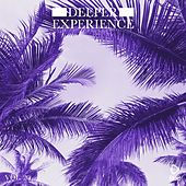 Deeper Experience, Vol. 20 by Various Artists