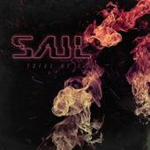 Trial By Fire de Saul