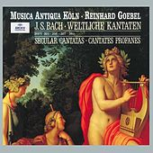 Bach: Secular Cantatas, BWV 36c, 201, 206, 207, Quodlibet BWV 524 by Various Artists