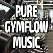Pure Gymflow Music by Various Artists