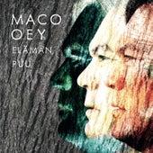 Elämän puu by Maco Oey