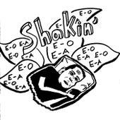 Shakin' (Erik Paulson Mix) by Remo Drive