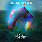 Fade Forget de Black Grapefruit