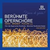 Famous Opera Choruses by Chor des Bayerischen Rundfunks