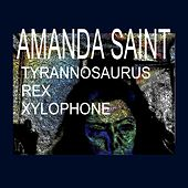 Tyrannosaurus Rex Xylophone by Amanda Saint