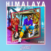 Himalaya (feat. Reykon) by Fano