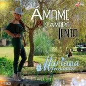 Ámame en Cámara Lenta de Mariana Fernandez