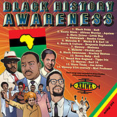 Black History Awareness by Various Artists