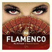 Nü Flamenco by Various Artists